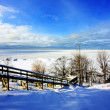 Winter Scene at a Lake — Stock Photo
