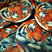 Tiger printed on plates — Stock Photo