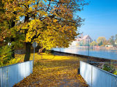 Fall by the river — Stock Photo