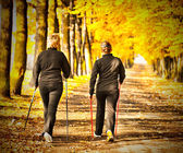 Two women in the park - Nordic walking — Stock Photo