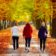 Three women in park - Nordic walking — Stock Photo #7466659