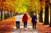 Three women in the park - Nordic walking — Stock Photo