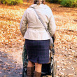 Mother with pram walking in an autumn park - Stock Photo