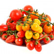 Branch of tomatoes — Stock Photo