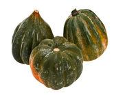 Decorative pumpkin — Stock Photo