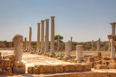 Ancient Roman site in Salamis — Stock Photo