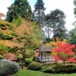 Japanese Tea House and garden - Stock Photo