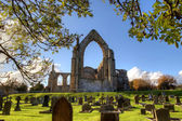 Historic Bolton Abbey — Stock Photo