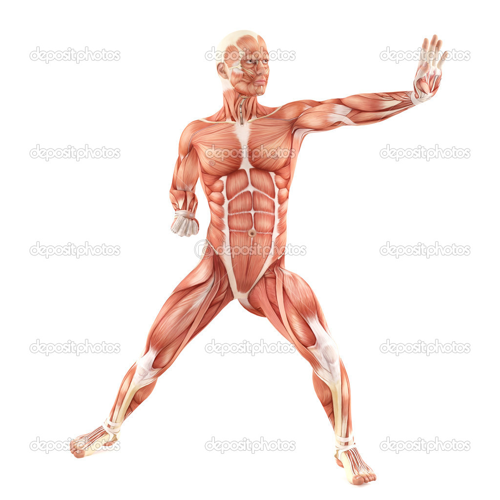 Fight muscle back boy gay sex when 10