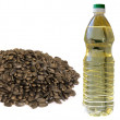 Sunflower seeds oil — Stock Photo