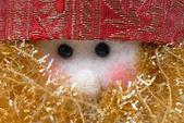 圣诞贺卡肖像圣诞老人玩偶 — 图库照片