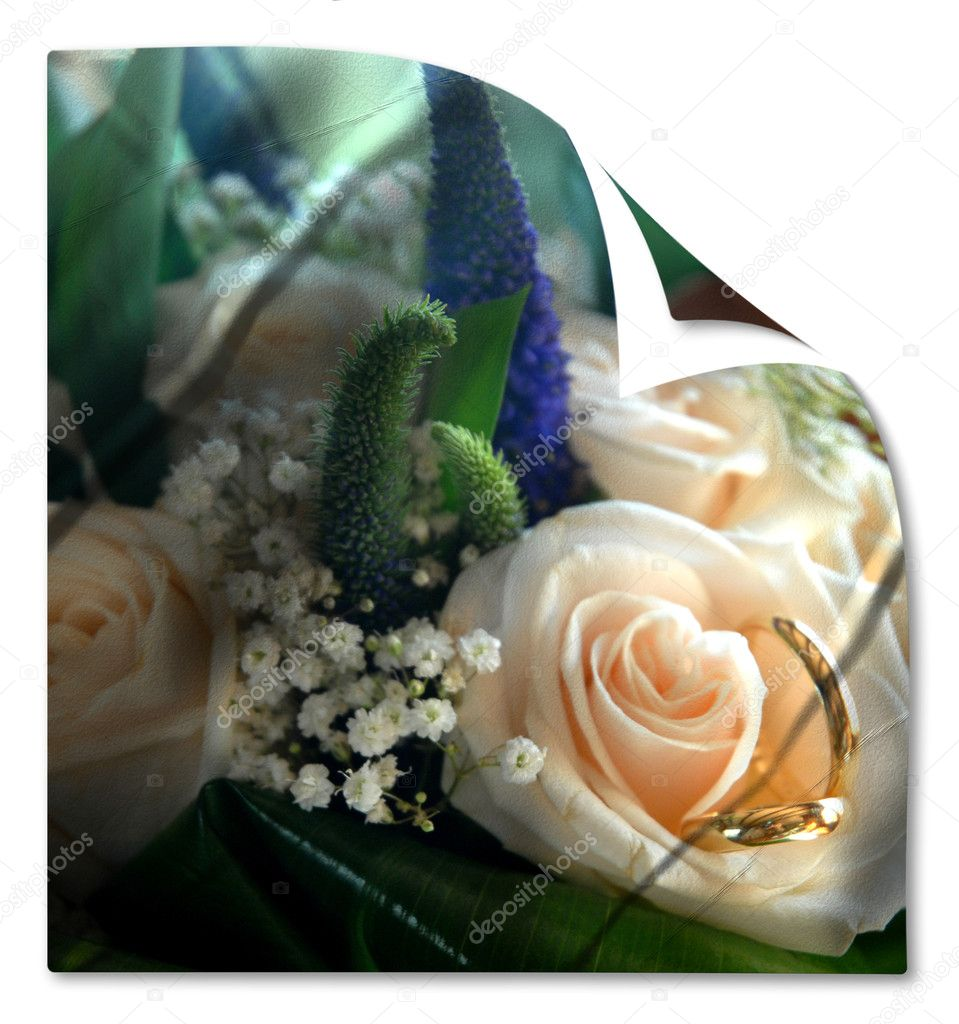 Card wedding bouquet and rings isolated  — Stock Photo #7329442