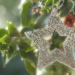Christmas background, silver star in holly — Stok Fotoğraf #7895054