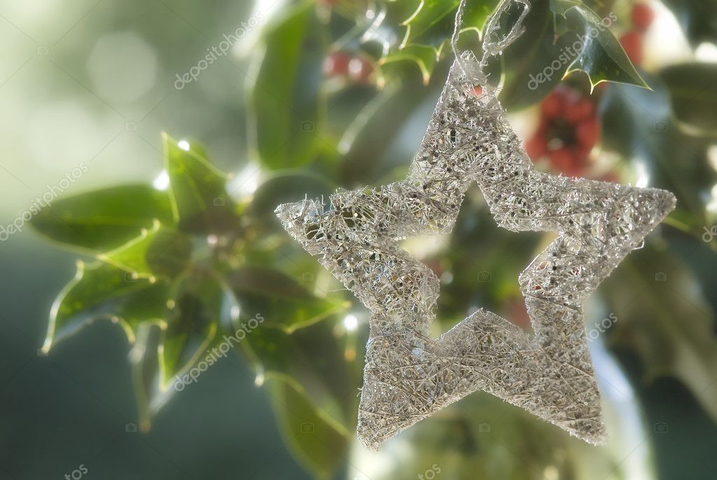 Christmas background, silver star hung on a holly with the blurred background — Stock Photo #7895054