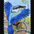 Stamp shows a Sacred Kingfisher bird with an insect in its beak — Stock Photo