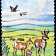 Royalty-Free Stock Photo: Stamp shows an image of nature with bison, ducks, and deer