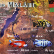 Stamp showing different fishes of Lake Malawi — Stock Photo #6904868