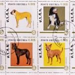 邮票展示不同品种的狗 — 图库照片