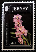 Stamp showing a cymbidium maufant — Stock Photo