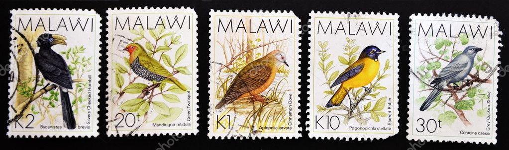 MALAWI - CIRCA 1987: A stamps printed in Malawi showing different birds, series, circa 1987 — Stock Photo #6904659