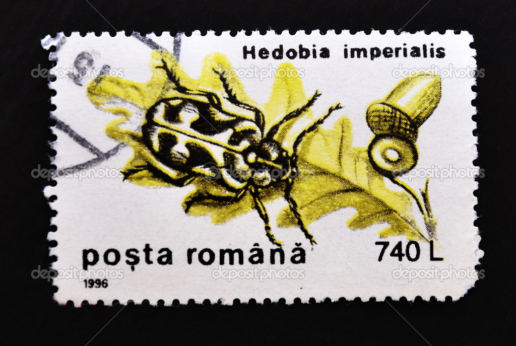 ROMANIA - CIRCA 1996: A stamp printed by Romania, shows a Hedobia imperialis, circa 1996.  — Stock Photo #6904664