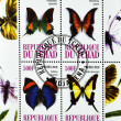 Stamp Shows different types of butterflies — Stock Photo