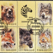 Stamp shows different images of animals — Stock Photo #6993935
