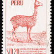 Stamp shows a llama — Stock Photo