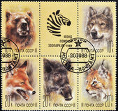 Stamp shows different images of animals — Stock Photo