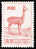Stamp shows a llama — Foto Stock
