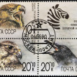 UNION OF SOVIET SOCIALIST REPUBLICS - CIRC1990: stamp from USSR shows different images of birds, serie, circ1990 — Stock Photo #7201513