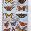 Stock Photo: SLOVAKIA - CIRCA 2002: A stamp printed in Slovakia shows different kinds of butterflies, serie, circa 2002