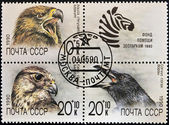 UNION OF SOVIET SOCIALIST REPUBLICS - CIRCA 1990: a stamp from the USSR shows different images of birds, serie, circa 1990 — Stock Photo