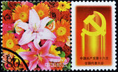 A stamp printed in China shows a flower — Stock Photo