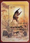 NORTH KOREA - CIRCA 1992: A stamp printed in DPR Korea shows a monkey jumping, circa 1992 — Stockfoto