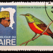 ZAIRE - CIRCA 1970: A stamp printed in Zaire dedicated to expedition on the river zaire, circa 1970 - Photo