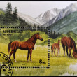 Royalty-Free Stock Photo: AZERBAIJAN - CIRCA 1993: A stamp printed in Azerbaijan shows a horse standing in a pasture, circa 1993.