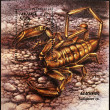 Stock Photo: Stamp shows scorpion, hadogenes