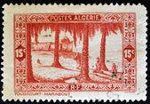 ALGERIA - CIRCA 1936: A stamp printed in Algeria shows Touggourt (marabout), circa 1936 — Stock Photo
