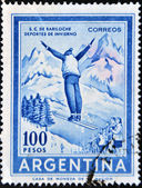 ARGENTINA - CIRCA 1959: A stamp printed in Argentina dedicated to winter sports, San Carlos de Bariloche, circa 1959 — Stock Photo