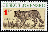 CZECHOSLOVAKIA - CIRCA 1990: A stamp printed in Czechoslovakia showing Wild Cat, circa 1990 — Stock Photo