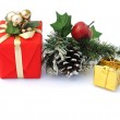 Small gift pack with pine cone and holly — Stock Photo #6818938