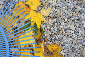 Blue rake over yellow dried leaves, with space for your text — Stock Photo