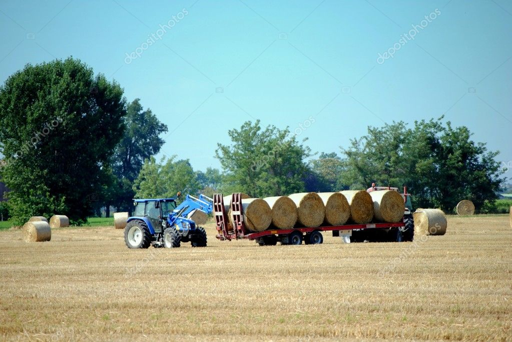Tractors load bales of hay in farmlands — Stock Photo #7731956