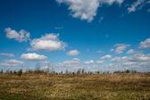 Steppe autumn landscape — Stock Photo