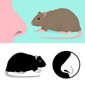 Idiom To Smell A Rat — Stock Vector