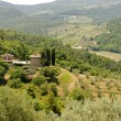Stock Photo: Hills in Tuscany near Artimino