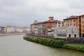 Pisa and the Arno river — Stock Photo