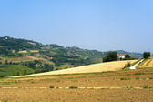 Landscape in Emilia Romagna (Italy) at summer — Stock Photo