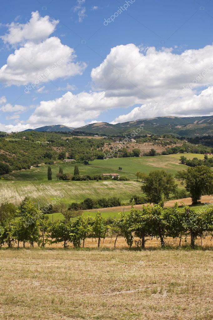 Landscape between Lazio and Umbria at summer — Stock Photo #6836663